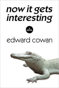 now it gets interesting_cover_ebook_new